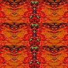 Inca Nature by C J Lewis