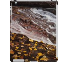 Waterfall country South Wales iPad Case/Skin
