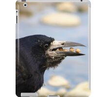 A Rook filling it's crop with food iPad Case/Skin
