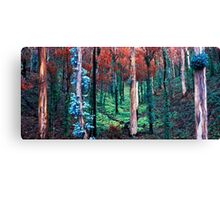 After the Summer Fires Canvas Print