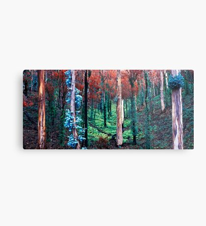 After the Summer Fires Metal Print