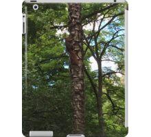 The Hidden Squirrel iPad Case/Skin