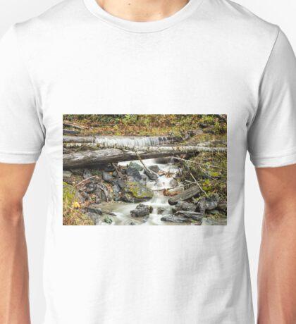 Autumn Mountain Stream Unisex T-Shirt