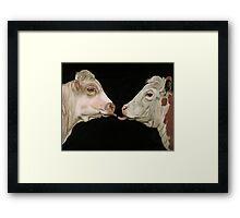 Cow Lick Framed Print