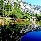 Yosemite x2 by AleksCanard