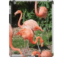 pink flamingo iPad Case/Skin