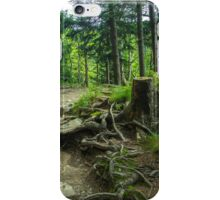 Fairytale Forest - Nature Photography iPhone Case/Skin