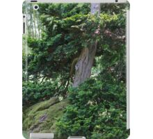 tree in spring iPad Case/Skin