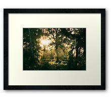Ancient Light Framed Print