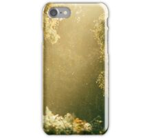 Ancient Light iPhone Case/Skin