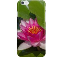 waterlily in the lake iPhone Case/Skin