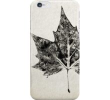 Leaf Print II iPhone Case/Skin