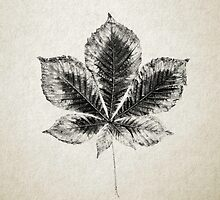 Leaf Print III by Daniel Watts