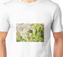 red admiral butterfly Unisex T-Shirt