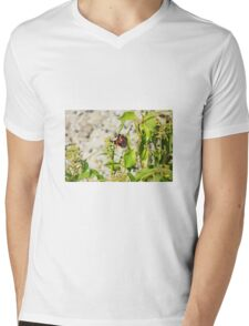 red admiral butterfly Mens V-Neck T-Shirt