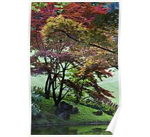 tree on the lake Poster