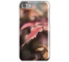 Winter Red iPhone Case/Skin