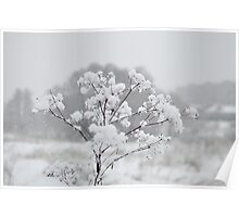 Snowflakes are Blown Away by Wind Poster