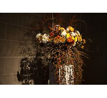 Mother Nature's Autumn Colors - a Still Life Photographic Print