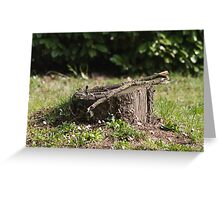 tree trunk on the lawn Greeting Card