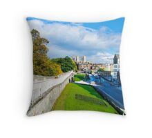 York Walls and Minster Throw Pillow