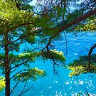 Trees & Ocean by Christine Anna Wilson