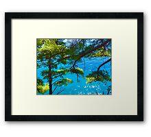 Trees & Ocean Framed Print
