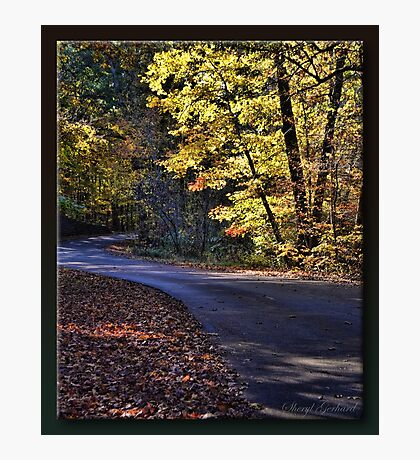 Curves Photographic Print