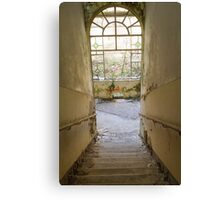scale abandoned Canvas Print