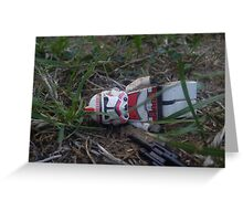 Down and out 2 Greeting Card