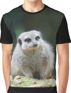 Fluffy Meerkat Graphic T-Shirt