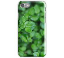 Day 15 - Green iPhone Case/Skin
