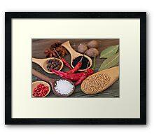 Spicy kitchen Framed Print