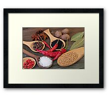 Spicy kitchen Framed Print