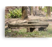 old bench in the park Metal Print