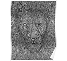 King Of Jungle Drawing Poster