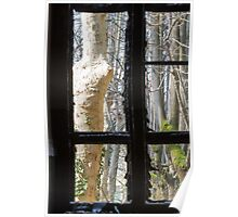 Old window with broken glass Poster