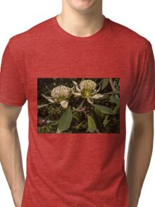 Cream flower Leith Park Victoria 20160920 7518 Tri-blend T-Shirt