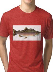 Salmon Artwork  Tri-blend T-Shirt