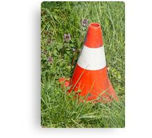 road cone in the meadow Metal Print