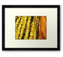 Palm Seeds Framed Print