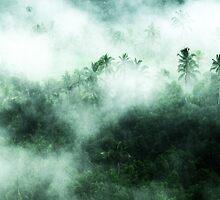 Bali Rain by wellman