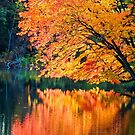 The Magic of Autumn in New England by Anita Pollak