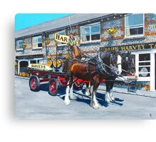 Dray Days of Summer Canvas Print