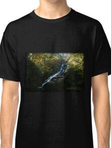 Dingmans Autumn Afternoon Classic T-Shirt