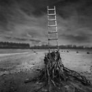 Jacob's Ladder by KLIMAS