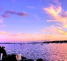 Sunset In Pink & Purple by Nancy Richard