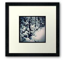 Riverside in Winter Framed Print