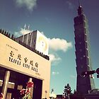 Taipei city hall &Taipei 101 by 黃 黃