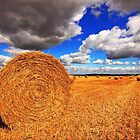 Golden Harvest......Straw Bales by Paul Bettison